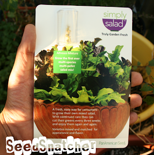 SimplySalad-Lettuce-Seed-Pellets, Ball-Hort