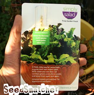 SimplySalad-Lettuce-Seed-Pellets, Ball-Hort