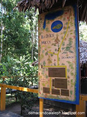 Isla de los micos eco Turismo Colombia