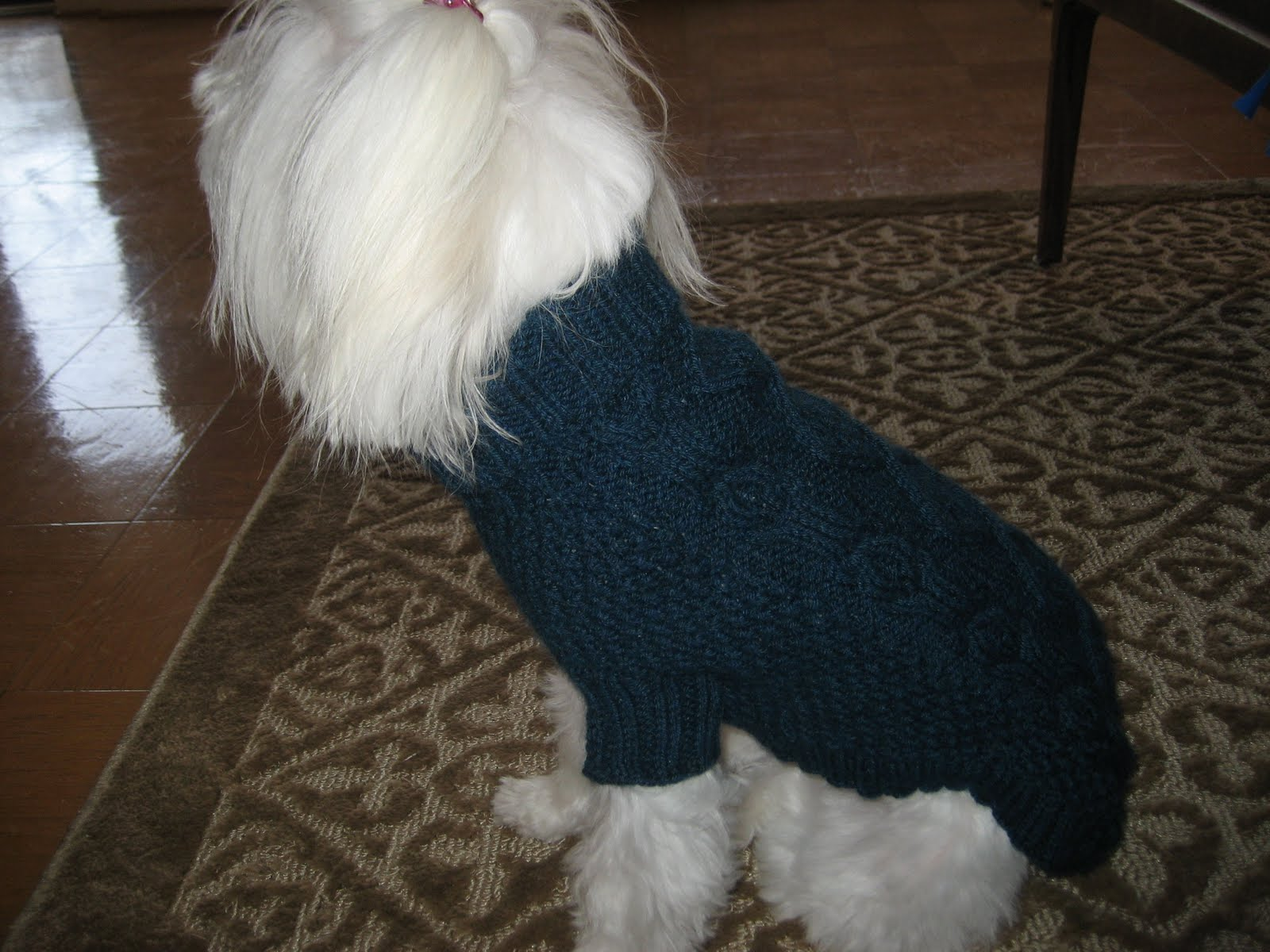 Knits, Cooks, Cats & Books: FO: Biscuits & Bones Dog Sweater