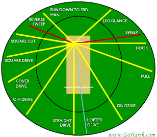 Cricket Shots and Fielding Positions