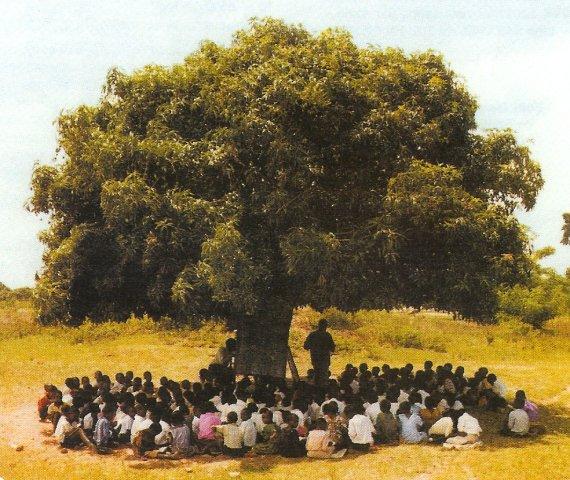 http://1.bp.blogspot.com/_DMxDOYqJJ7Q/TTGcTOSfDDI/AAAAAAAABoY/xrA3Gs-0gKk/s1600/arbre-a-palabres.jpg