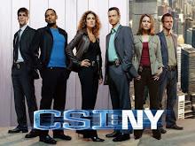 CSI New York