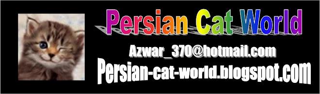 Persian Cat World