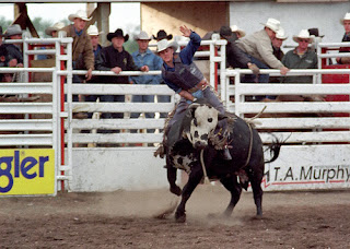 Rodeo Houston Texas