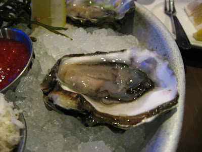 Oyster at Yankee Pier