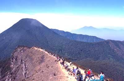 taman nasional, indonesia, ilmuku, gunung ged