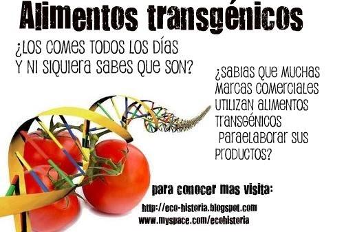 Rescatando el futuro alimentos transg nicos realmente sabes que son - Alimentos que no engordan para cenar ...