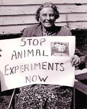 Liberacion Animal /¡accion y reaccion!