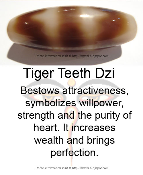 Tiger Teeth dzi Meaning Card