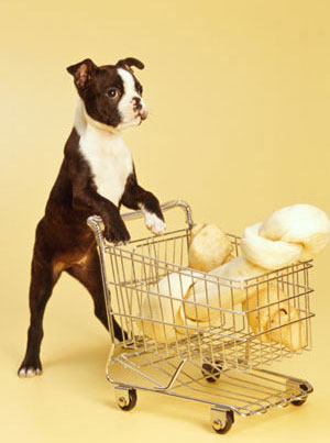 Pet Foods Available at Online Supermarkets