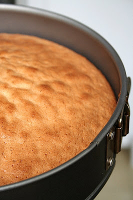 Daring Bakers - Gâteau Filbert Praliné -