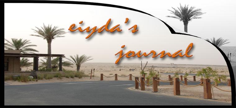 eiyda's journal