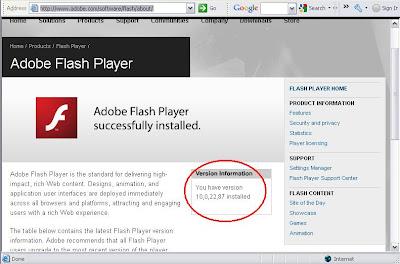 Adobe - Flash Player