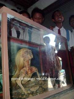 Penemuan Ular Berkepala Manusia.serbatujuh.blogspot.com