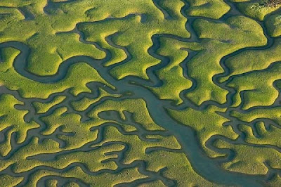 Earth's Fractal Brain From Above @ strange world