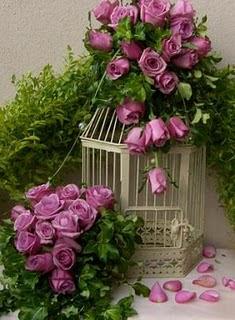 """Os poderosos podem matar uma, duas até três rosas, mas nunca deterão a primavera."""" Che Guevara"""