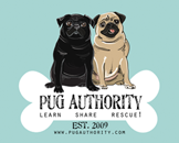 Love Pugs & Support Rescue?