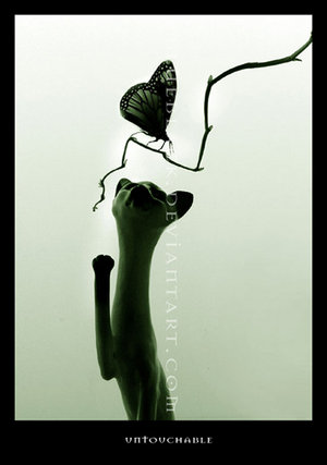 Untouchable or Surreal Lady by BlueBlack