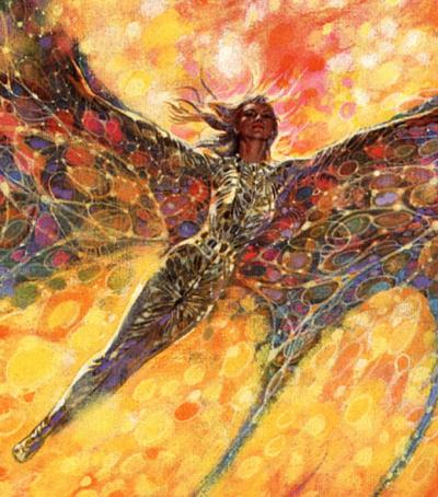 Phoenix by Richard Powers