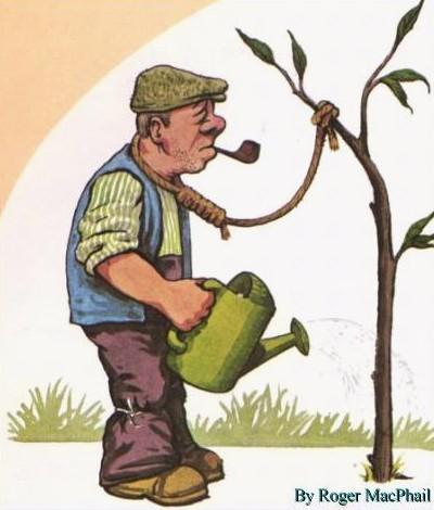 Den gamle gartner