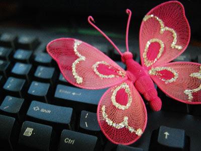 Stof-sommerfugl på tastatur