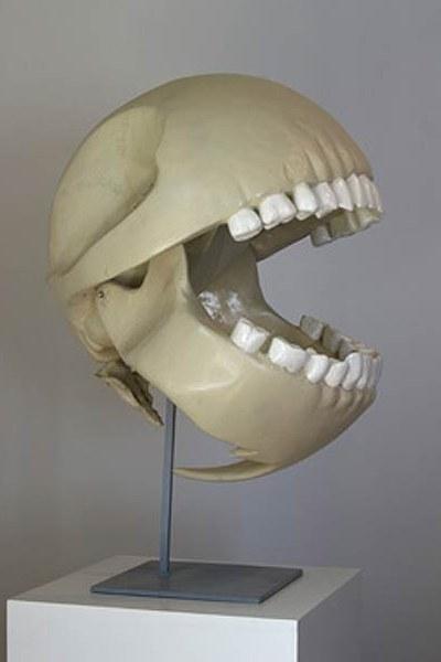 Pac-man kranium/skelet