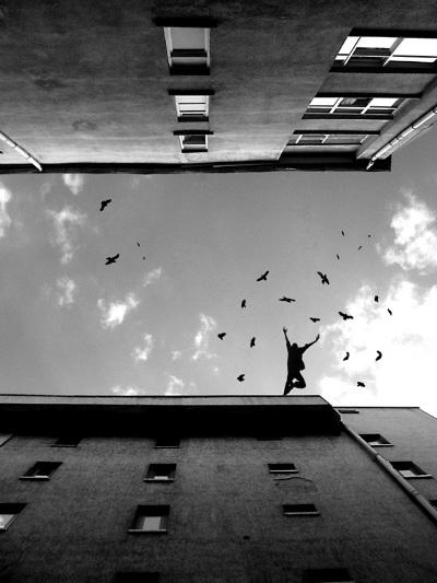 Dus med himlens fugle