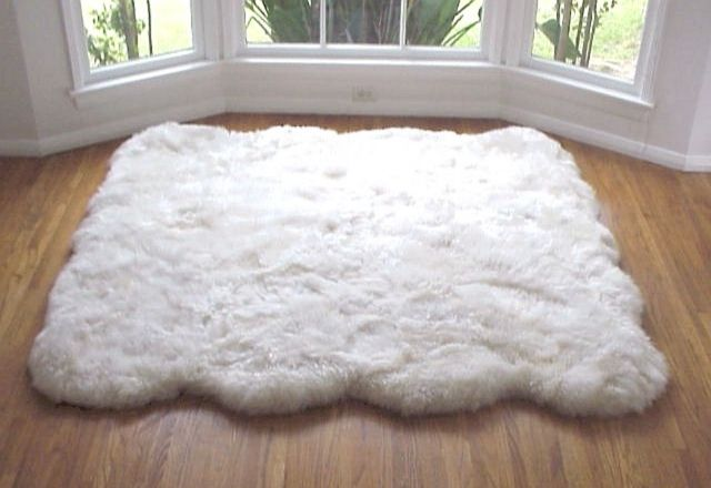 ... with fluffy rug butterfly rug shop http butterflyrug net fluffyrug