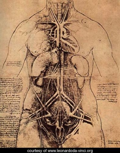 DaVinci's Erotic Drawings. Posted by ERN at 12:03 PM. Labels: art + design