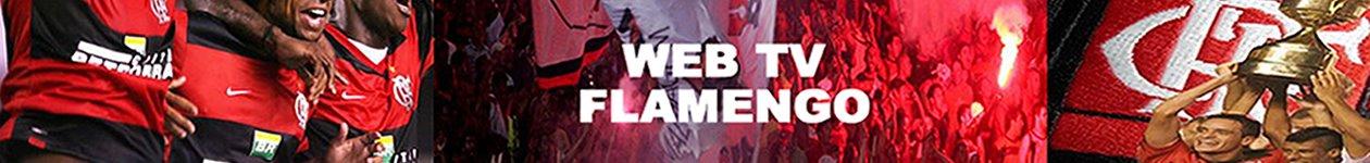 Web Tv Portal FLA