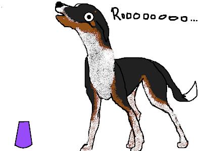 Mentally Challenged Dog Adoption