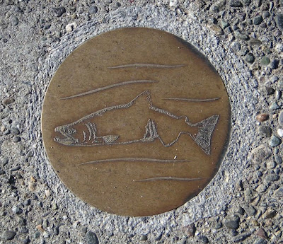 Salmon Art at the Lake Washington Ship Canal Fish Ladder, Seattle, Washington