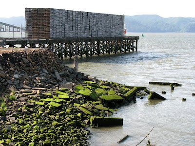 Pallets and Crumbling Concrete Along the Riverfront, Astoria, Oregon