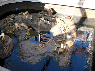 Model tar pit with model fossils, San Deigo Zoo