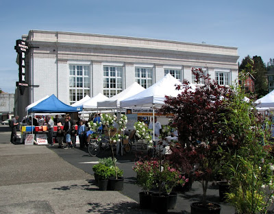 Sunday Market and the Bank - Astoria, Oregon