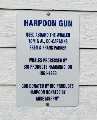 The sign says, Harpoon gun used aboard the whaler Tom and Al, co-captains Eben and Frank Parker. Whales processed by Bio Products Hammond, OR 1961-1963. Gun donated by Bio Products, Harpoon donated by Mike Murphy.