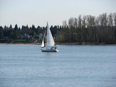 A sailboat on the Columbia River