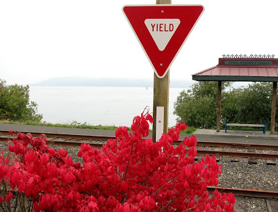 Railroad Tracks and Scarlet Fall Foliage