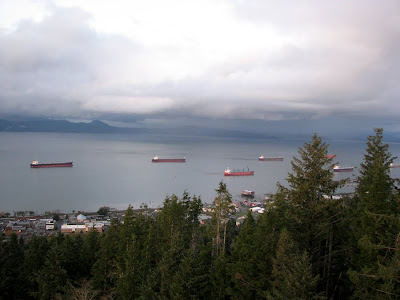 Ships on the Columbia River from the Astoria Column, Astoria, Oregon