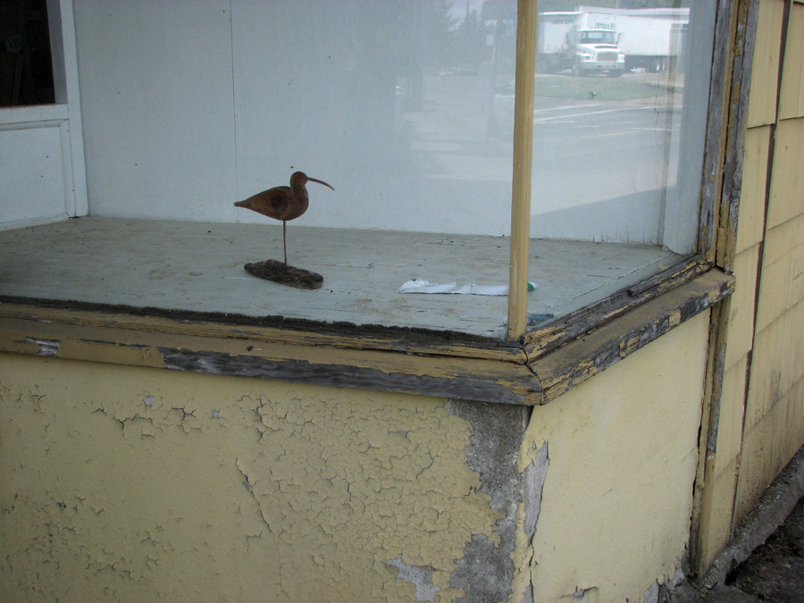 Lonely Bird Carving in a Window