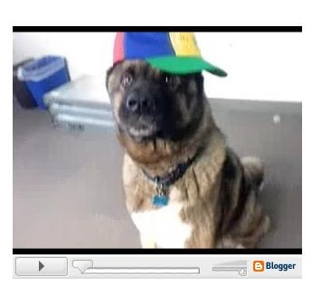 Blogger video player