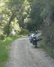 Shirttail Canyon Road