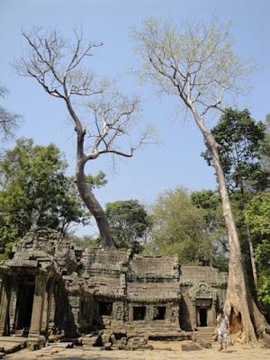 Templul din Jungla din Cambogia, unde a filmat Angelina Jolie