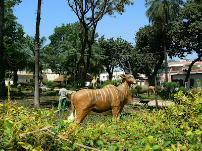 Imagini Mali: statui de animale in Bamako
