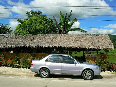 Imagini Filipine: ferma de tarsieri Bohol