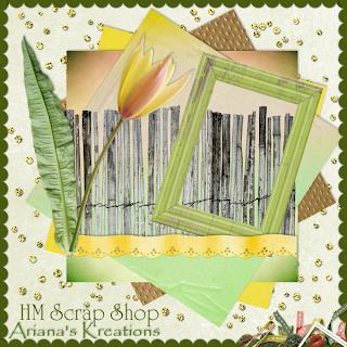 http://arianaskreations.blogspot.com/2009/09/blog-train-la-tulipa.html