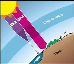 destrucción de la capa de ozono es uno de los problemas ambientales ...