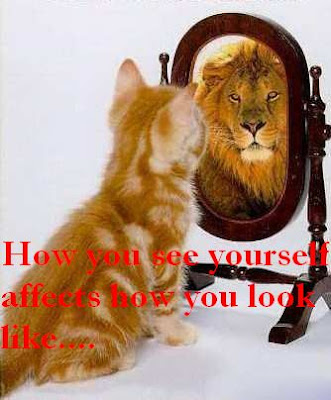 Funny photos of a cat which see itself as a lion.. 搞笑图片:把自己当成狮子的猫