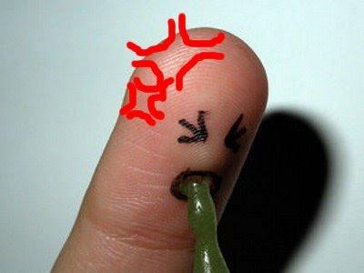 Funny Human: Drunk finger